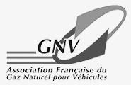 Partenaire Cryo Pur- GNV